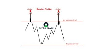 Strategi kemenangan di Olymp Trade: Gabungan Pin Bar dan support/resistance